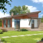 Привлекательный дом с фасадом с односкатной крышей
