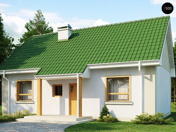 Уютный вид фасада с двухскатной крышей