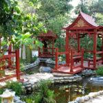 Садовый фэн-шуй: гармония вокруг нас