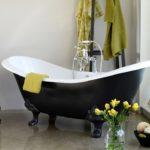 Какую ванну выбрать: виды и их характеристики