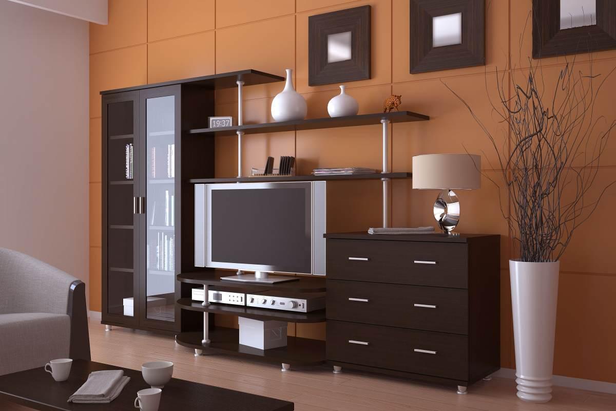 простейшая корпусная мебель с фото вообще