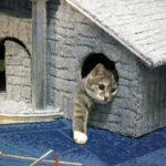 Как грамотно вписать в интерьер кошачий домик