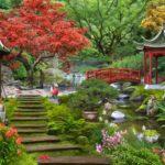 Почему знаменитости выбирают оформление сада в японском стиле
