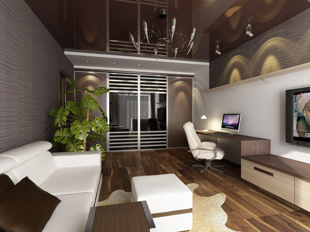 перевод ремонт однокомнатных квартир фото дизайн простого переходника одуванчик