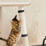 Мебель стойкая к царапинам животных