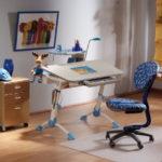 Письменный стол для ребенка: основы выбора