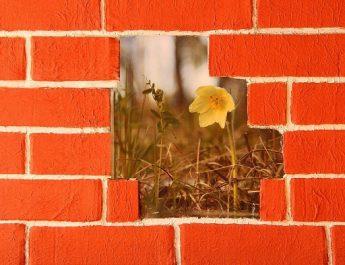 Бюджетные варианты имитации кирпичной стены