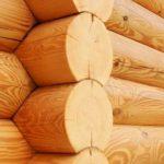 Лучший способ предотвратить гниение дерева