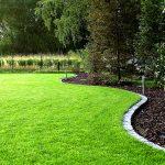 Ошибки при выращивании газона: что нужно знать?