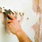 Какие ошибки приводят к растрескиванию краски на стенах