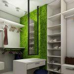 Преимущества и особенности декоративного моха