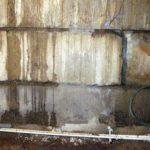 Что делать, если бетон в подвале от сырости стал зеленеть