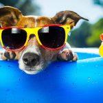 Как спасаться от жары: 10 лучших советов