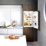 В каких ситуациях встраиваемого холодильника не будет хватать