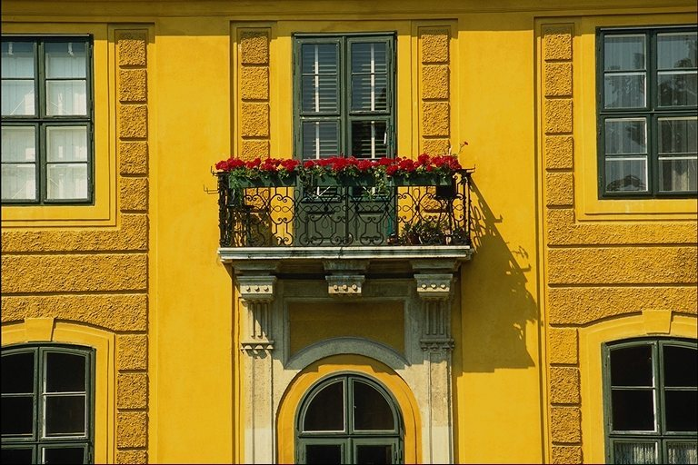 Желтый фасад здания