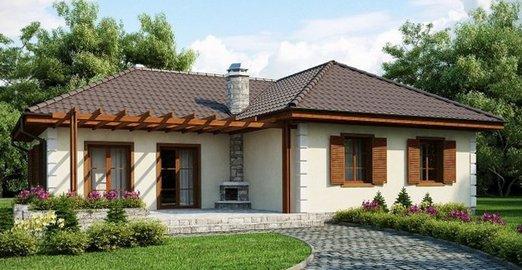 Задний фасад дома с камином