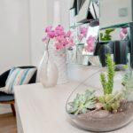 Где лучше не ставить цветы в квартире